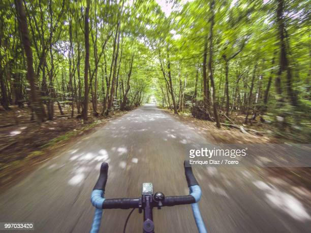 hands free cycling through the forest, england. - hands free cycling stock pictures, royalty-free photos & images