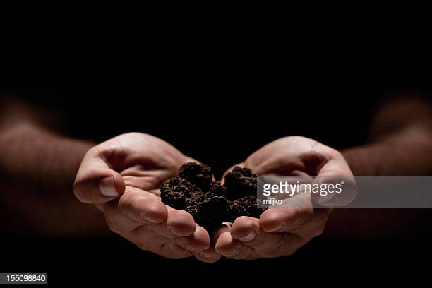 Hands full of truffles over black background