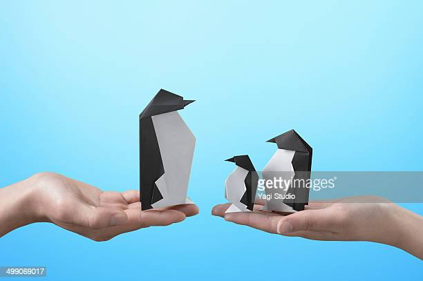 Hands holding a  Three penguins