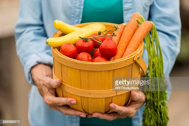 Mãos segurando o cesto de legumes frescos de Verão