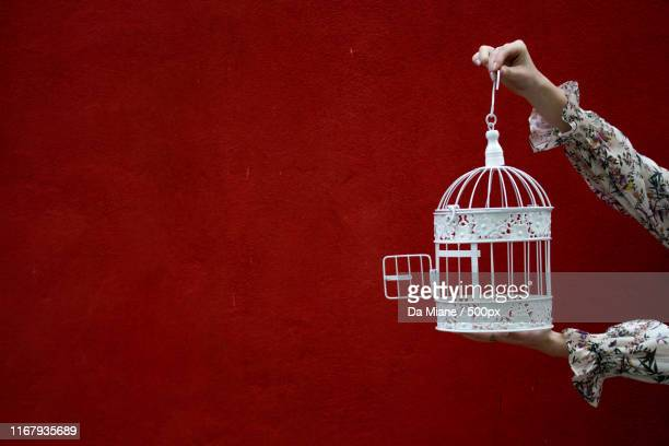 hands holding bird cage - open blouse stock photos and pictures
