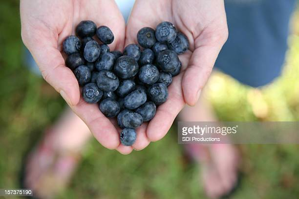 Hands Holding Blueberries In The Shape Of A Heart