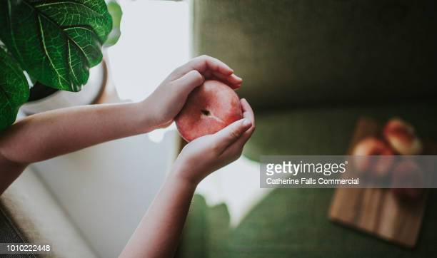 hands holding chinese flat peaches - natural condition stock pictures, royalty-free photos & images