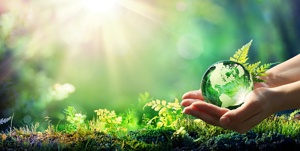 Hands Holding Globe Glass In Green Forest - Environment Concept - Element of image furnished by NASA 1129110491