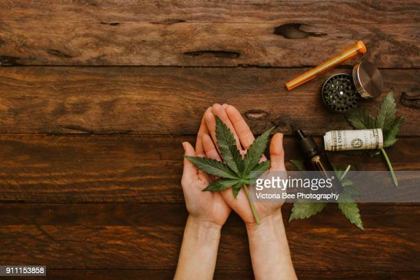 hands holding green leaves of medicinal cannabis with extract oil and dollars - cannabis oil stock photos and pictures