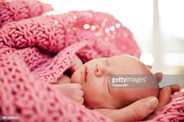Hands holding head of a newborn baby in a pink wook blanket