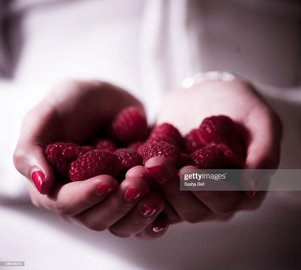Hands holding raspberries : Stock Photo