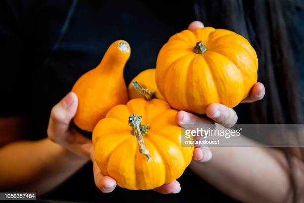 Hands holding small decorative pumpkin for Halloween