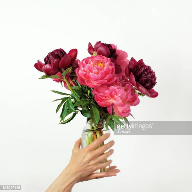 Hands holding vibrant pink flowers in jar