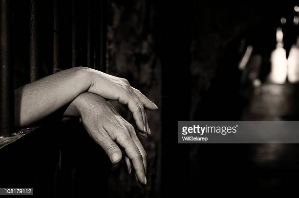Hands in cage