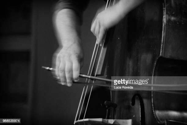 hands movement . . . - violin family stock photos and pictures