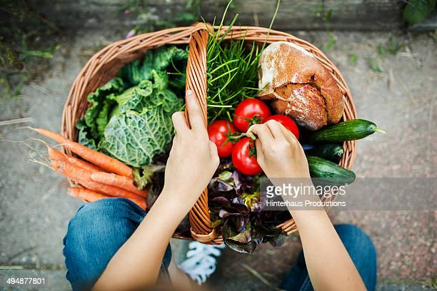 hands of a girl with harvested vegetable - gezonde voeding stockfoto's en -beelden