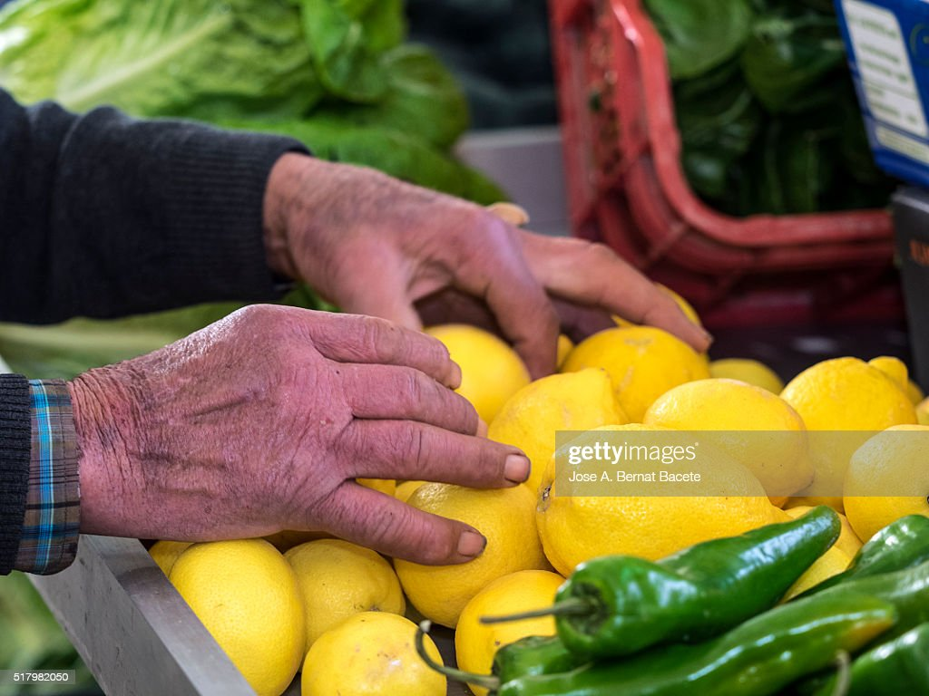 Hands Of An Adult Man With A Few Lemons In A Position Of The