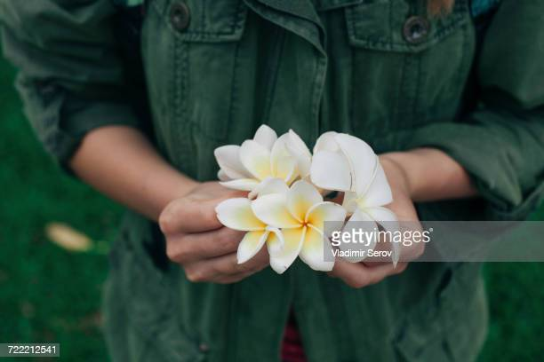 Hands of Caucasian woman holding flowers