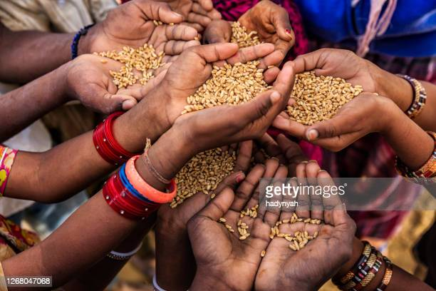 hands of poor - asking for food, africa - famine stock pictures, royalty-free photos & images