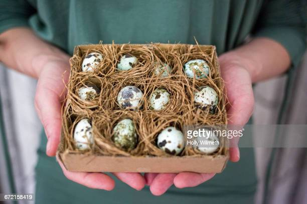 Hands of woman holding box of fragile eggs
