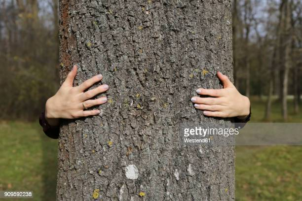Hands of woman hugging a tree in forest