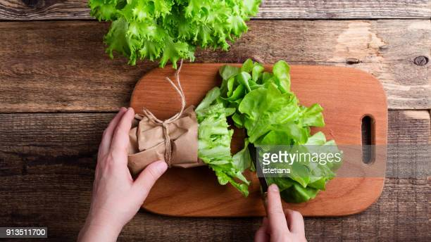 hands of woman slice green leaf lettuce - lettuce stock pictures, royalty-free photos & images