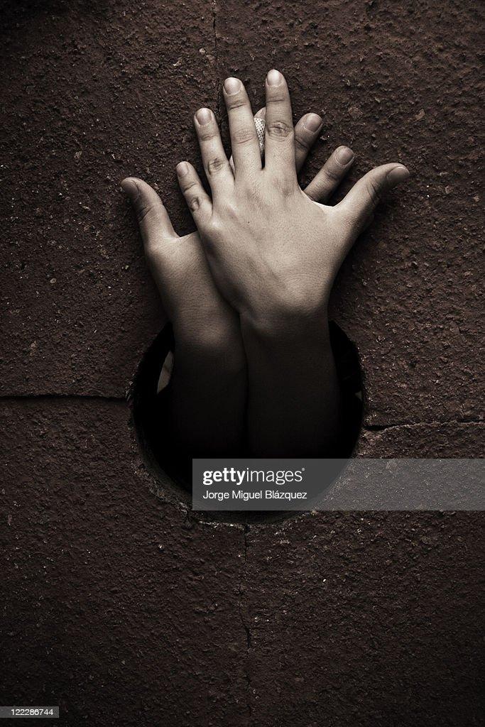 Hands : Foto de stock