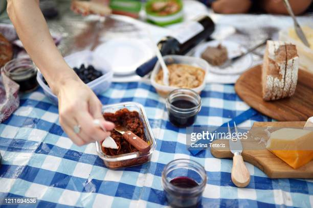 hands reaching for food at a picnic - picnic blanket stock pictures, royalty-free photos & images