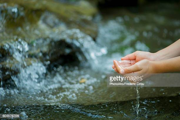 Hands scooping water from stream