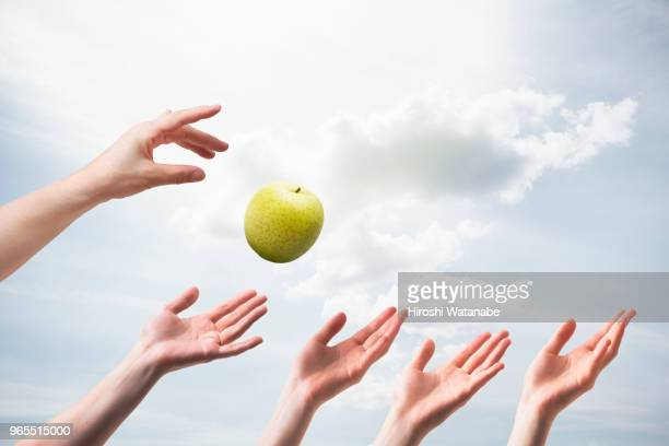 hands seem to catch the green apple - desire stock pictures, royalty-free photos & images