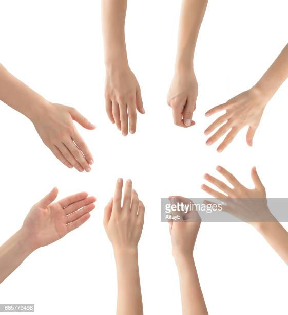 hands set , isolated - plain background stock pictures, royalty-free photos & images