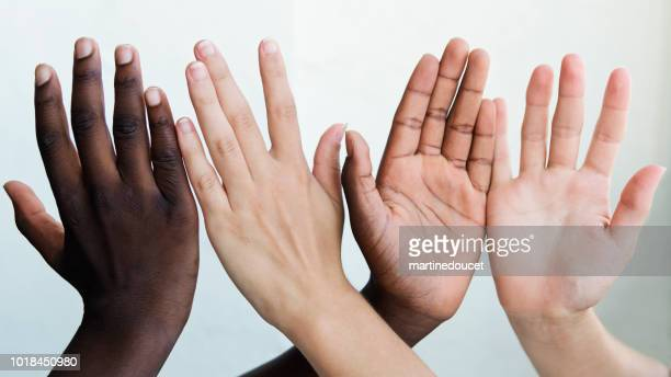 "hands showing different skin colors on white background. - ""martine doucet"" or martinedoucet stock pictures, royalty-free photos & images"
