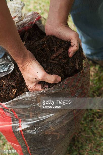 hands taking garden soil out of bag - mulch stock pictures, royalty-free photos & images