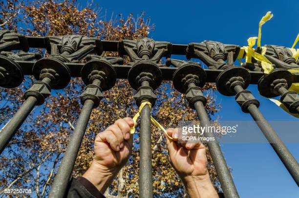 Hands tie a yellow ribbon on the gate of the Park of the Ciutadella Support to the independence movement are continuous in Catalunya This morning...