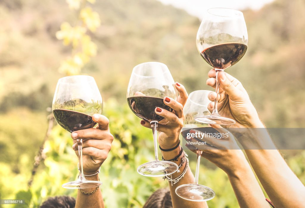 Hands toasting red wine glass and friends having fun cheering at winetasting experience - Young people enjoying harvest time together at farmhouse vineyard countryside - Youth and friendship concept : Stock Photo