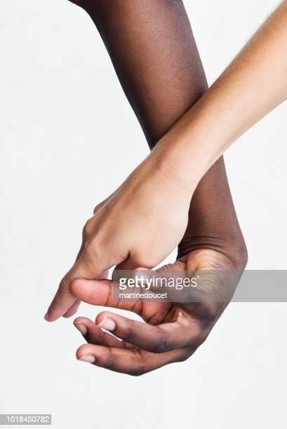 "hands with different skin colors on white background. - ""martine doucet"" or martinedoucet stock pictures, royalty-free photos & images"