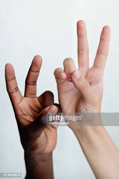 """hands with different skin colors on white background. - """"martine doucet"""" or martinedoucet stock pictures, royalty-free photos & images"""