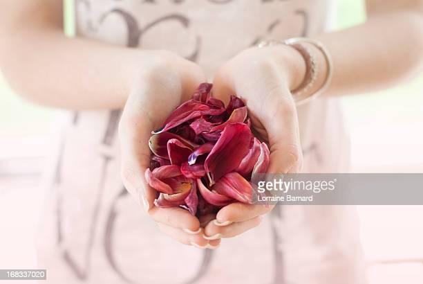 hands with petals