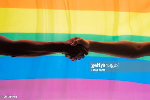 handshake against the background of the lgbt flag. - sex stock photos and pictures