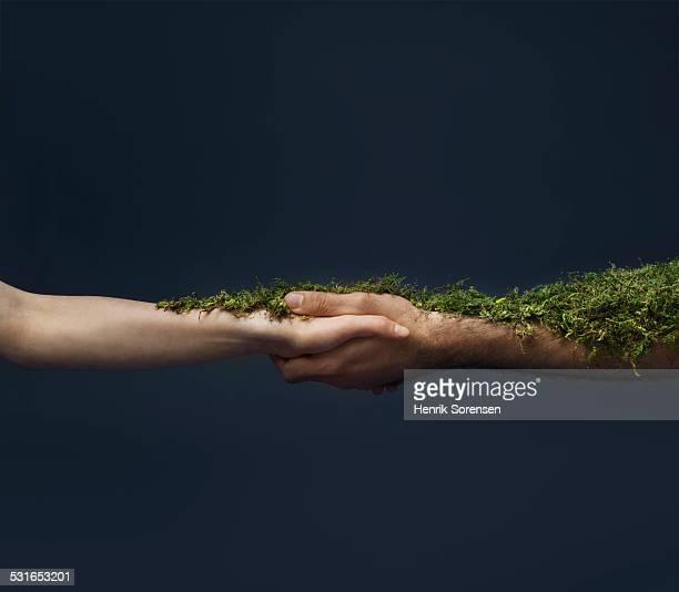 handshake with moss