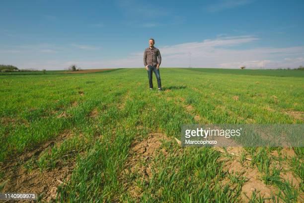 早春の彼の小麦苗の農業分野でハンサムな大人の農夫。空中ビュー。 - シード ストックフォトと画像