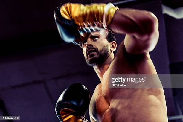 handsome and muscular boxer guarding against his opponent - mixed martial arts stock pictures, royalty-free photos & images
