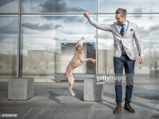 handsome bearded businessman playing with dog in front of modern office building