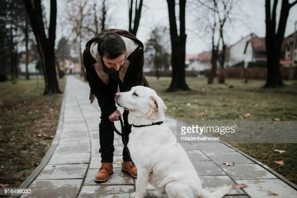 homem barbudo bonito com seu labrador retriever - cão adestrado - fotografias e filmes do acervo