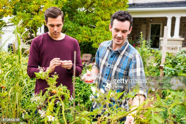 In garden Gay couple