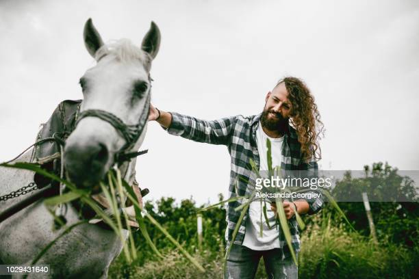 handsome male hipster feeding horse in nature - macedonia country stock pictures, royalty-free photos & images