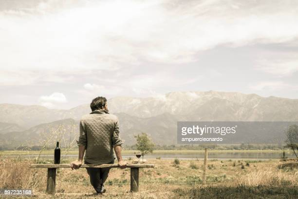 handsome man enjoying the landscape view of a lake in chilean patagonia and drinking red wine in a fine glass cup - chile stock pictures, royalty-free photos & images