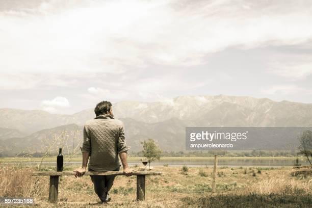 chilenischer wein erfahrung - chile stock-fotos und bilder