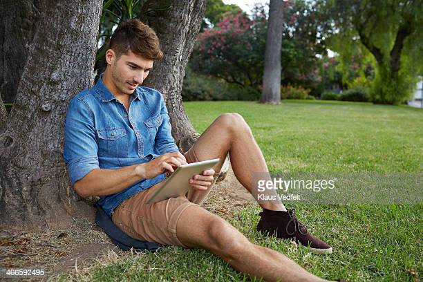 handsome man sitting under tree with tablet - klaus vedfelt mallorca stock pictures, royalty-free photos & images