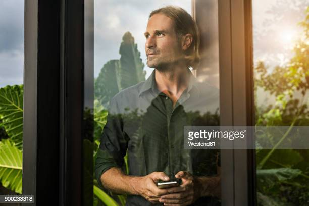 handsome man standing behind glass facade of design house holding smartphone surrounded by lush tropical garden - lush stock pictures, royalty-free photos & images