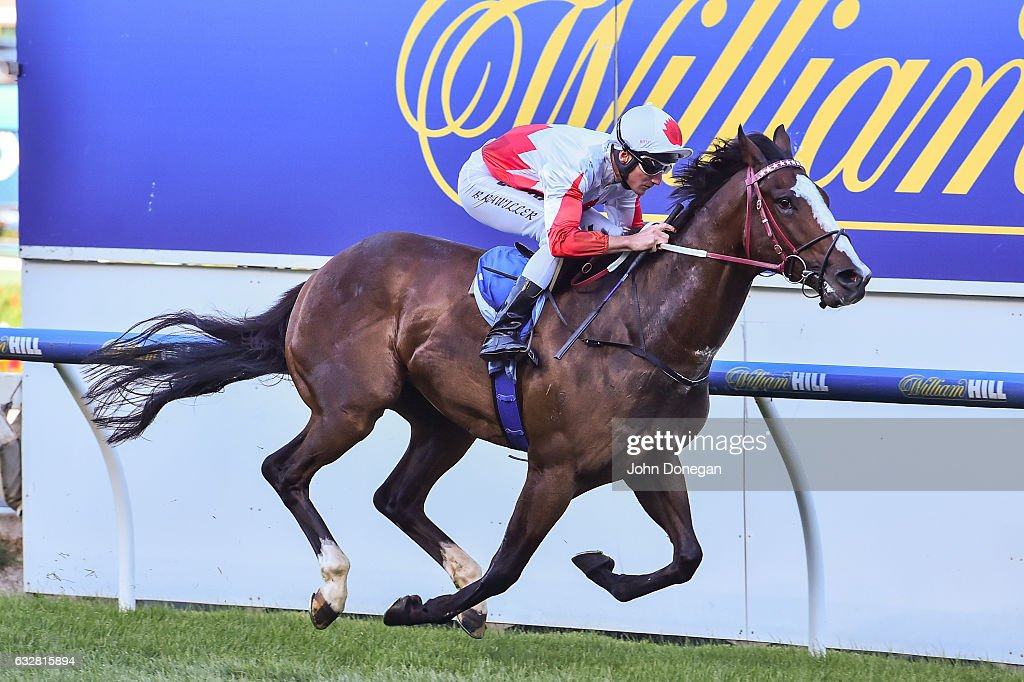 Handsome Thief (IRE) ridden by Brad Rawiller wins the William Hill Plate at Moonee Valley Racecourse on January 27, 2017 in Moonee Ponds, Australia.