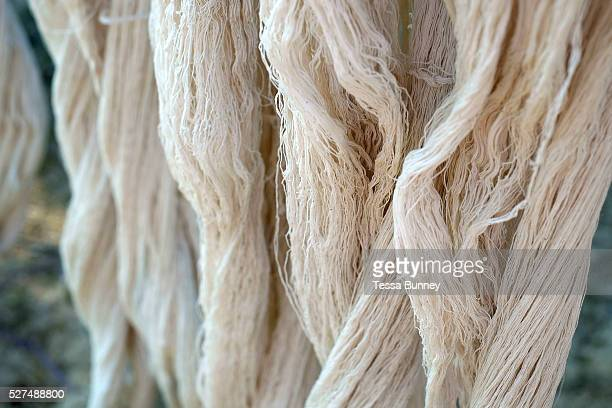 Handspun cotton hanging to dry in the Phu Tai ethnic minority village of Ban Lahanam Savannakhet province Lao PDR Cotton has been grown in Laos for...