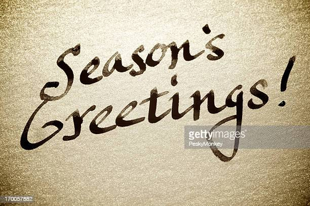 Handwritten Season's Greetings! Holiday Card Message Calligraphy Sparkle Paper