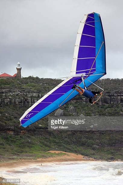 Hang gliding off the coast